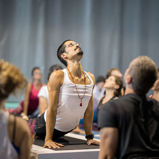 https://www.globalyogacongress.com/wp-content/uploads/2018/10/global-yoga-congress-6-540x540.jpg